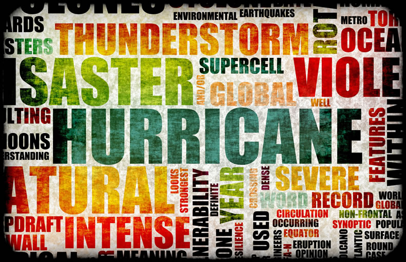 Continuity planning in case of hurricanes, tornadoes, floods, earthquakes, lightning, etc.