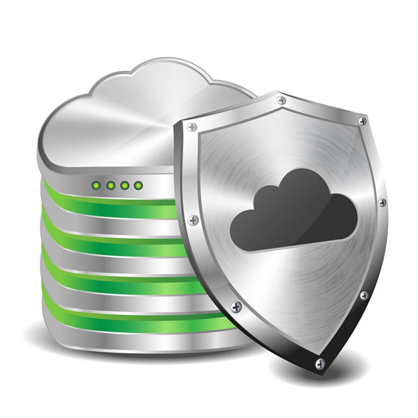 Remote Data Backup, Disaster Recovery Planning, Data Backup